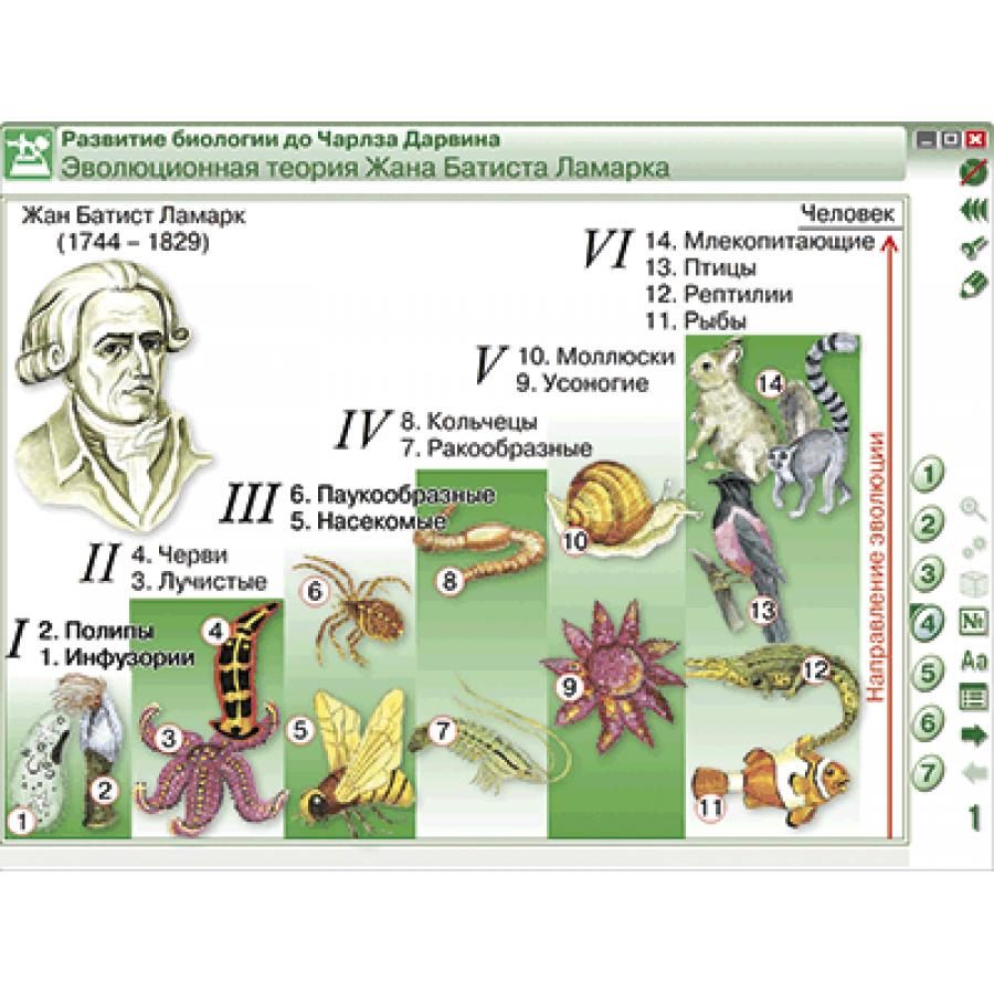 Наглядные пособия по биологии
